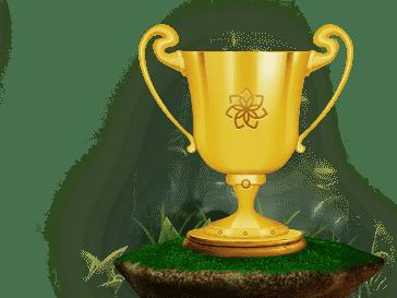 Nimm Teil an Regelmässigen Turnieren